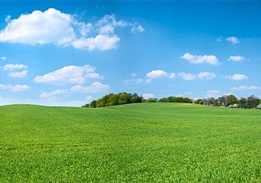 Environmentally Friendly Reduces Landfill Waste